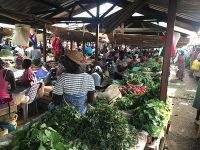 Local-Marketplace-IMG_3356